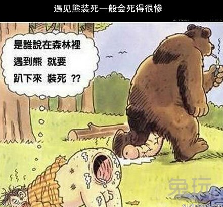 十万个冷知识:遇见熊装死一般会死的很惨(5)