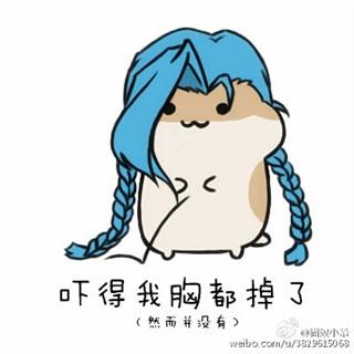 lol萌萌哒的鸽子表情吓的我都掉了一地体寒胃热可以喝仓鼠汤图片