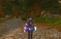 魔兽世界骑士幻化 魔兽世界圣骑士幻化推荐