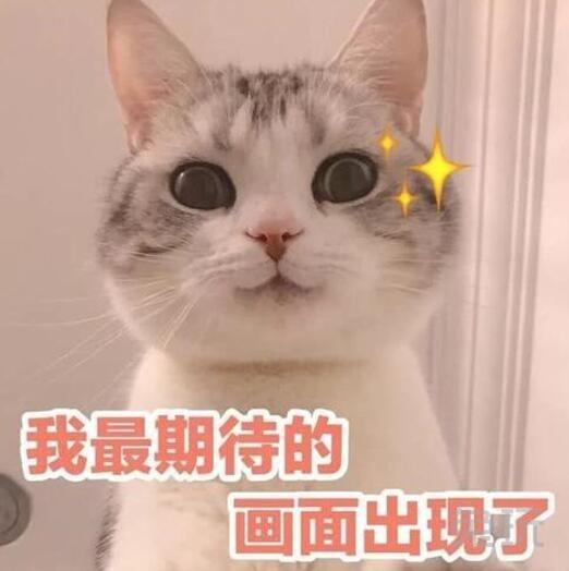 《【煜星平台app登录】喜迎新春,HLM虎牙天胡者联盟斗神争霸、雀神之王赛隆重开启!》