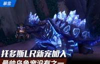 雷神王座4号也可抓?7.0猎人新宠水晶乌龟
