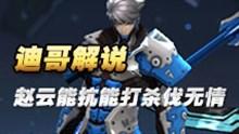 迪哥解说赵云第一视角 能抗能打杀伐无情